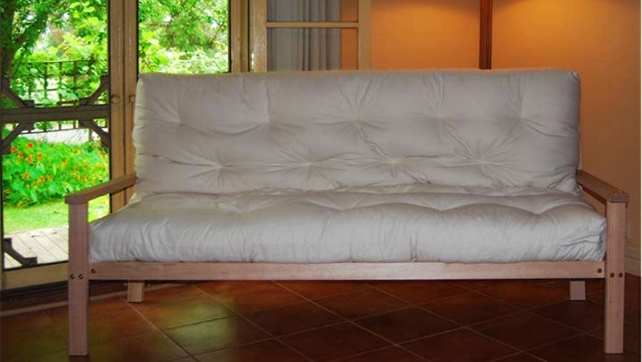 New Fold Out Sofa Bed Provides Healthy Solution