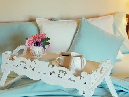 DISCOUNTED Organic Poplin Pillowcases – Europe 60 x 60 cm – mint