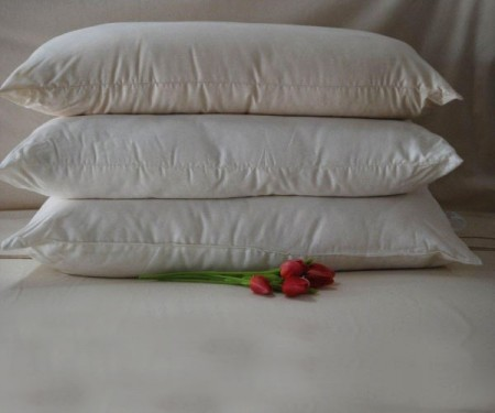 PILLOW – Certified Organic Cotton – various-sizes (firm)